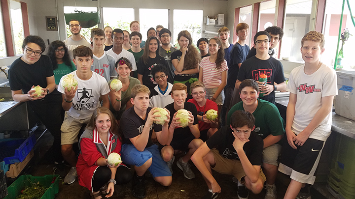 West German class showing cabbage they grew