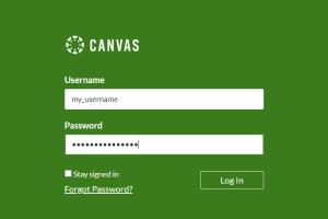 D219 Canvas login screenshot